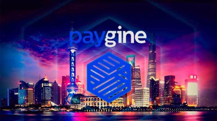 Paygine review completa