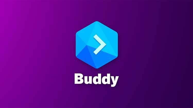 Review completa de ICO Buddy